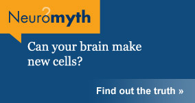 Neuromyth: Can your brain make new cells/
